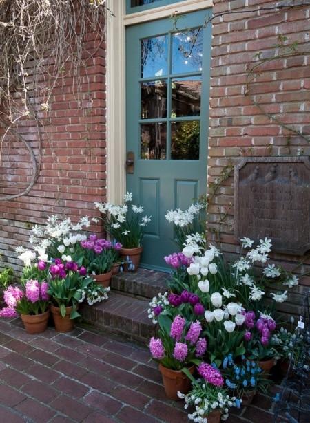 Poze Gradina de flori - Flori de primavara in ghivece