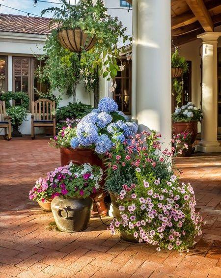 Poze Terasa - Cateva ghivece de mari dimensiuni cu flori multicolore sunt o solutie la indemana pentru a decora curtea, terasa sau balconul