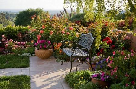 Poze Gradina de flori - Relaxare in mijlocul florilor