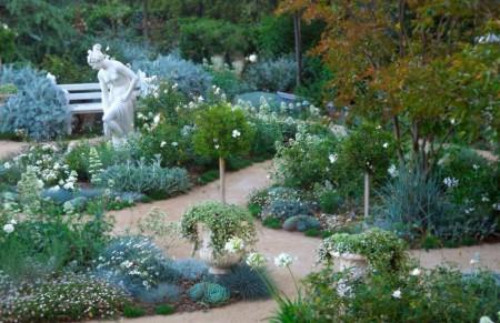 Poze Gradina de flori - Gradina alba