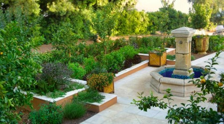 Poze Gradina legume - Zona plantelor aromatice din gradina