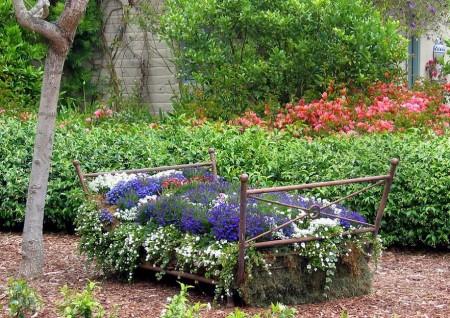 Poze Gradina de flori - Patul de flori