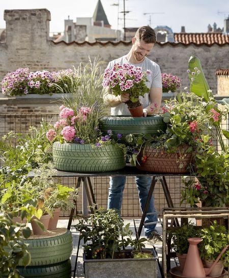 Poze Gradina de flori - gradina-acoperis-jardiniere-anvelope-uzate.jpg