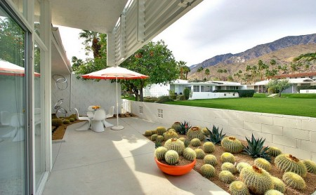 Poze Terasa - Gradina de cactusi