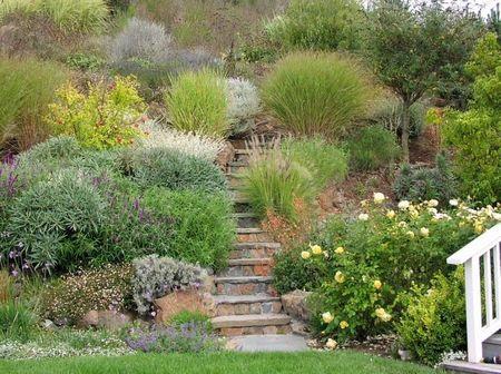 Poze Gradina de flori - Un deal abrupt este transformat intr-un peisaj luxuriant