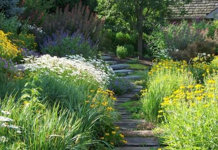 Poze Gradina de flori - Abundenta de flori in gradina rustica