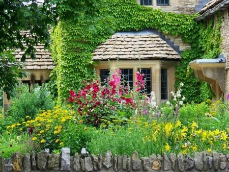 Poze Gradina de flori - Flori multicolore in gradina rustica