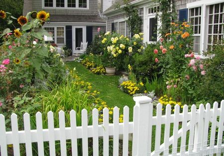 Poze Gradina de flori - Culoare si volum in gradina