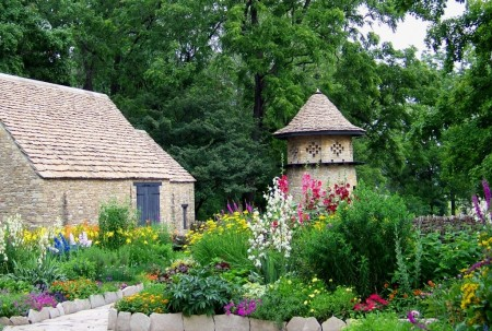 Poze Gradina de flori - Gradina rustica cu flori multicolore