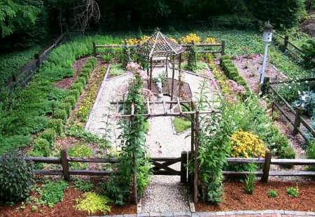 Poze Gradina legume - Gradina de legume rustica