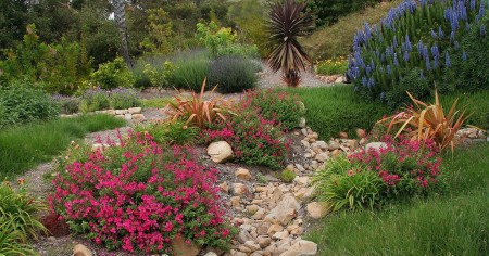 Poze Gradina de flori - Gradina rustica mediteraneana