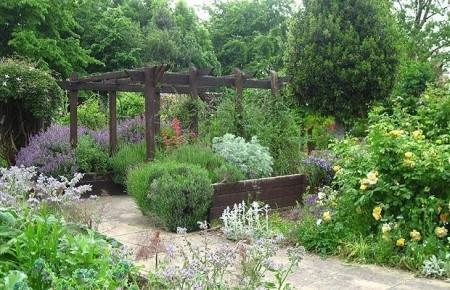 Poze Gradina de flori - Terapie prin horticultura