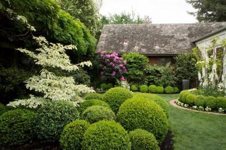 Poze Gradina de flori - Gard viu tuns in forme decorative