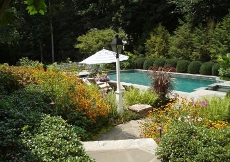 Poze Gradina de flori - Vegetatie abundenta in gradina traditionala