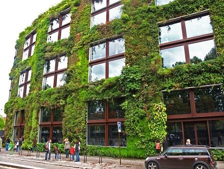 Poze Fatade - Gradina verticala a Muzeului Quai Branly din Paris