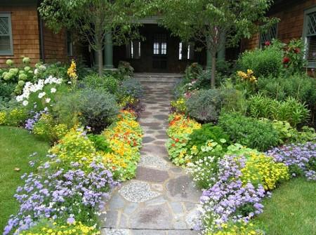 Poze Gradina de flori - Flori multicolore in gradina
