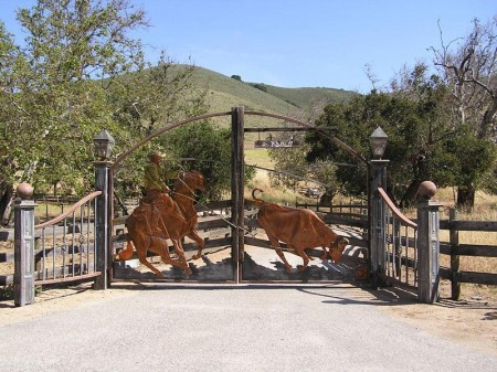 Poze Garduri si porti - Poarta personalizata din fier forjat
