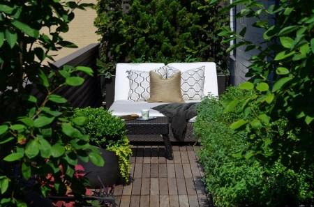 Poze Balcon - Oaza de verdeata de pe balcon