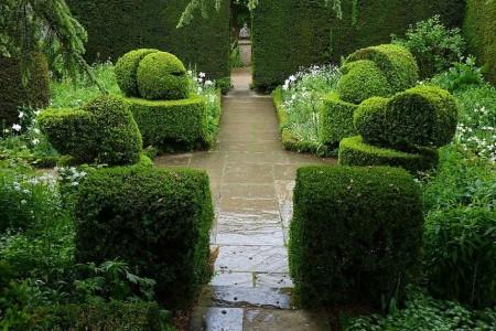 Poze Gradina de flori - Arta topiara in White Garden, Hidcote Manor Garden