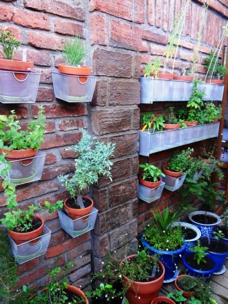 Poze Gradina de flori - Mica gradina verticala