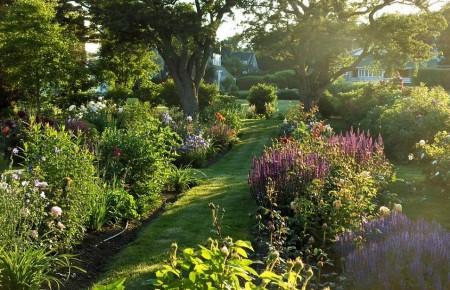 Poze Gradina de flori - Plante perene in gradina rustica