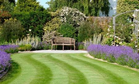 Poze Gradina de flori - Lavanda, pata de culoare in aceasta gradina clasica