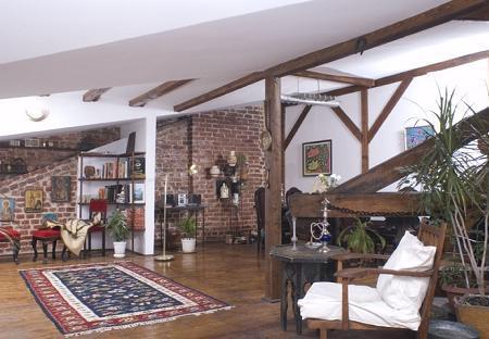 Poze Living - loft-pod-casa-istorica.jpg