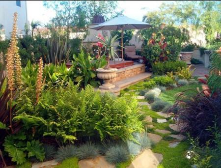 Poze Gradina de flori - O mare varietate de plante decorative
