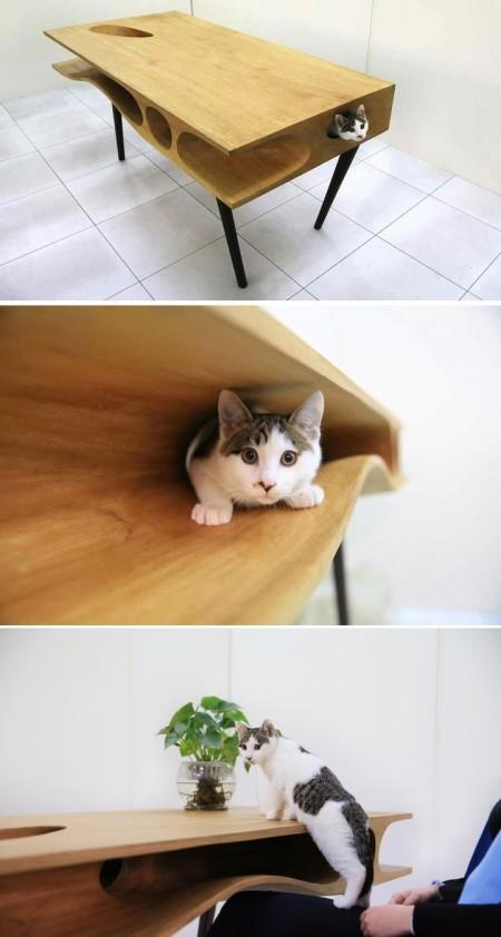 Poze Haioase - Masuta CATable - paradisul pisicilor