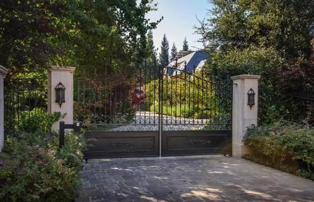 Poze Garduri si porti - Poarta din fier forjat