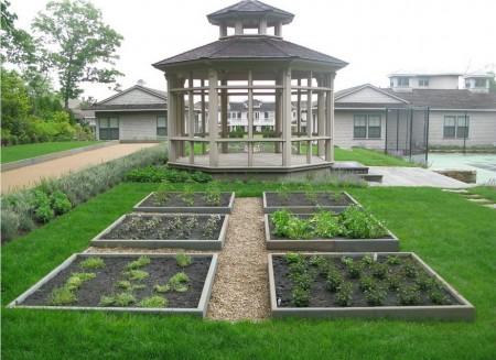 Poze Gradina legume - Mica gradina de legume organizata in straturi inaltate
