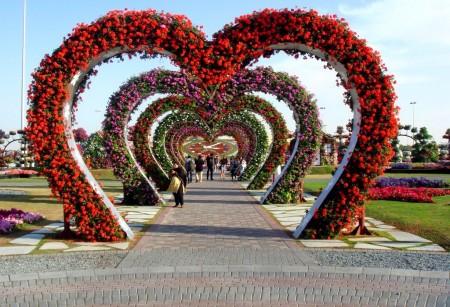 Poze Gradina de flori - Flori pentru toti indragostitii!