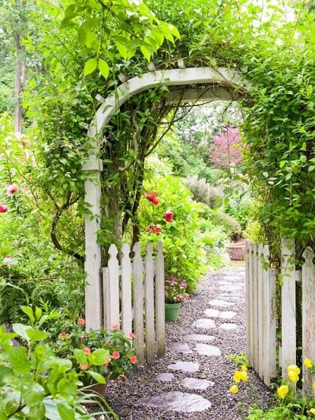Poze Pergola - Pergola decorata cu plante cataratoare