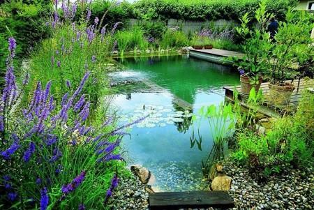 Poze Cascada si iaz - Iazul-piscina, un concept relativ nou dar care castiga tot mai multi adepti in intreaga lume