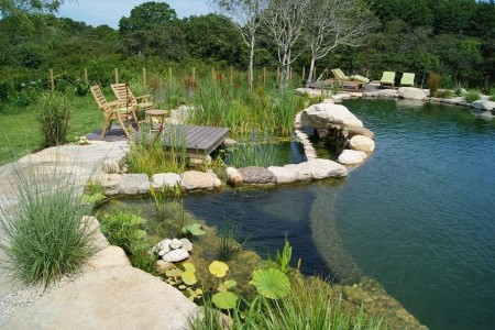 Poze Piscina - O piscina pe placul ecologistilor