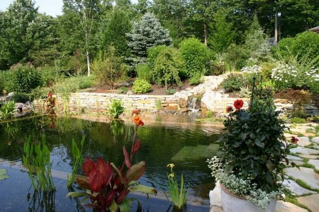 Poze Cascada si iaz - Iaz de gradina si piscina naturala