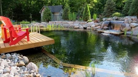 Poze Piscina - Piscina naturala cu cascada si terasa din lemn