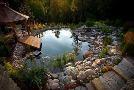 Poze Piscina - Piscinele naturale, un nou trend printre iubitorii mediului