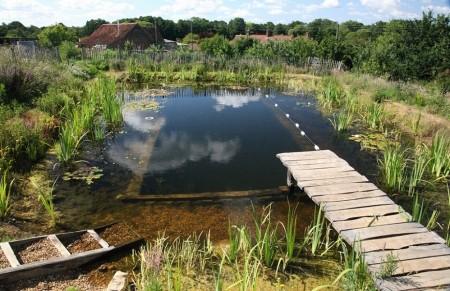 Poze Piscina - V-ati saturat de chimicalele din piscina? Optati pentru o piscina naturala!