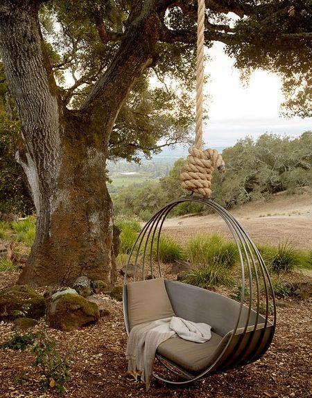 Poze Gradina de flori - Relaxare la umbra unui copac secular