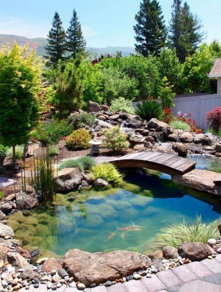 Poze Cascada si iaz - Iaz gradina montana