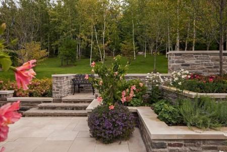 Poze Gradina de flori - Flori multicolore, peluza, arbori si arbusti