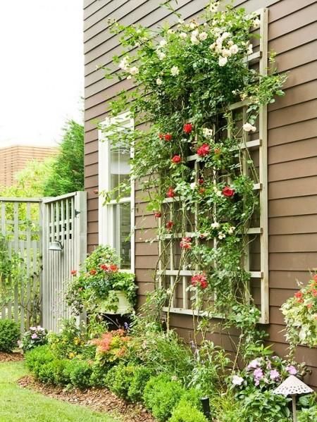 Poze Gradina de flori - Cu ajutorul unui spalier puteti decora fatada case