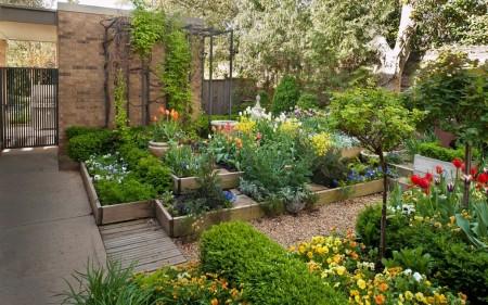 Poze Gradina de flori - Straturi inaltate intr-o gradina cu flori multicolore