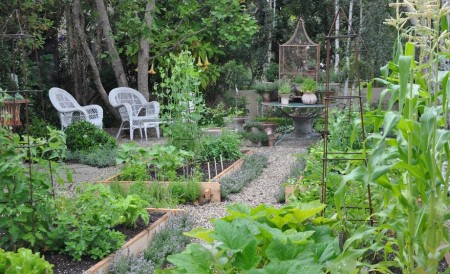 Poze Gradina legume - Aleile din piatra in gradina de legume