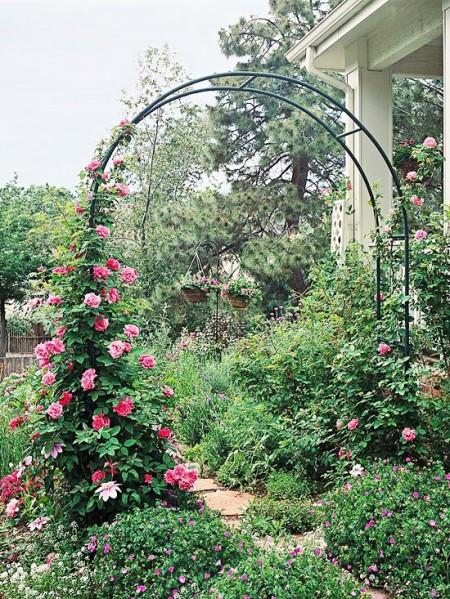 Poze Gradina de flori - Suport metalic pentru trandafiri cataratori