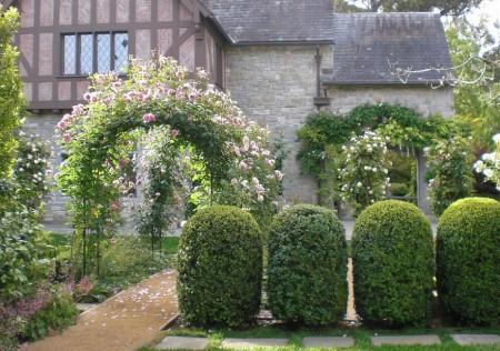 Poze Gradina de flori - Pergole cu trandafiri cataratori