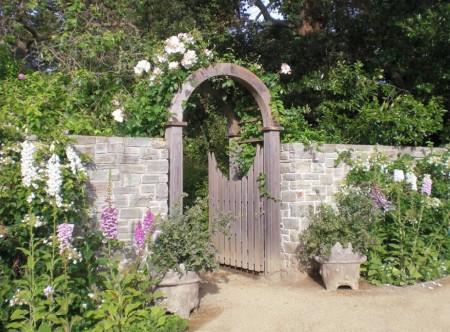 Poze Garduri si porti - Gard si poarta gradina rustica