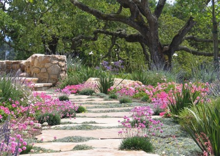 Poze Gradina de flori - Gradina rustica cu flori roz si mov