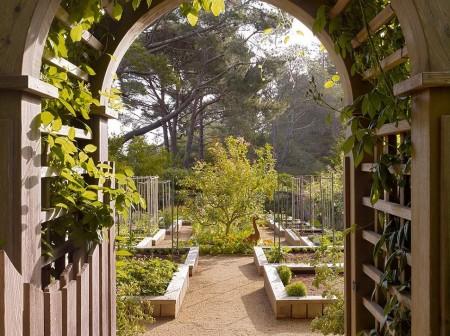 Poze Gradina legume - Intr-o asemenea gradina de legume munca devine o bucurie!